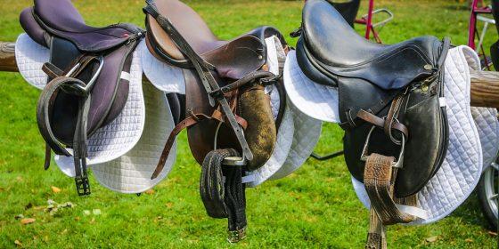 den richtigen pferdesattel finden
